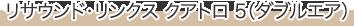 リサウンド・リンクス クアトロ ダブルエア 5